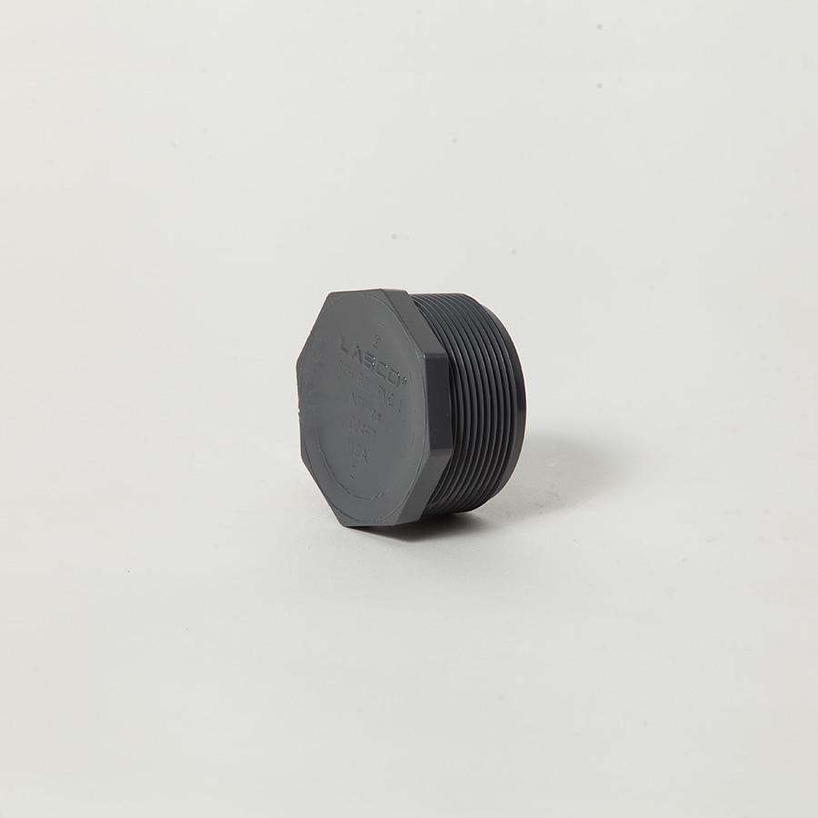 850020 2 Inch Mpt Plug