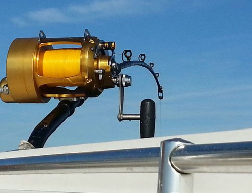 Electric Assist for Sport Fishing