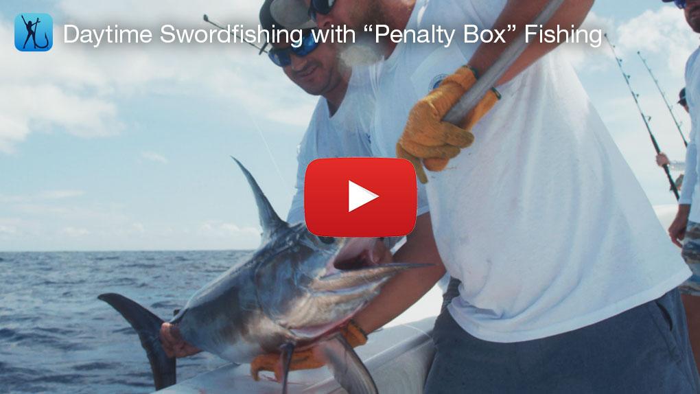 Daytime Swordfishing With Penalty Box Fishing